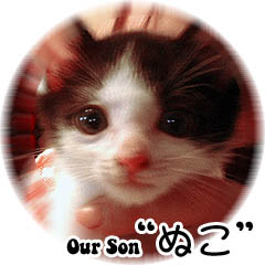 Our Son ぬこ