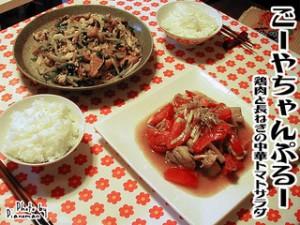 ごーやちゃんぷるー&鶏肉と長ねぎの中華トマトサラダ
